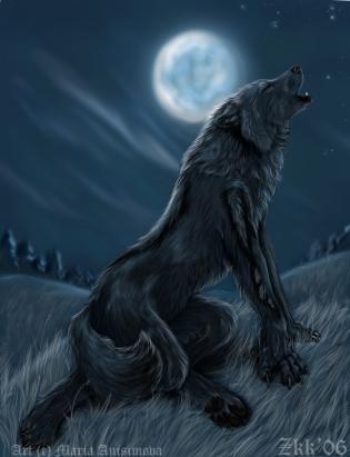 Картинка волки целуются - 62da1