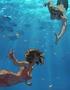Aquatic Ties