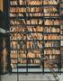 Library Hauls