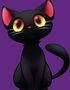 Onyx the Cat