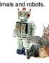Animals and Robots.